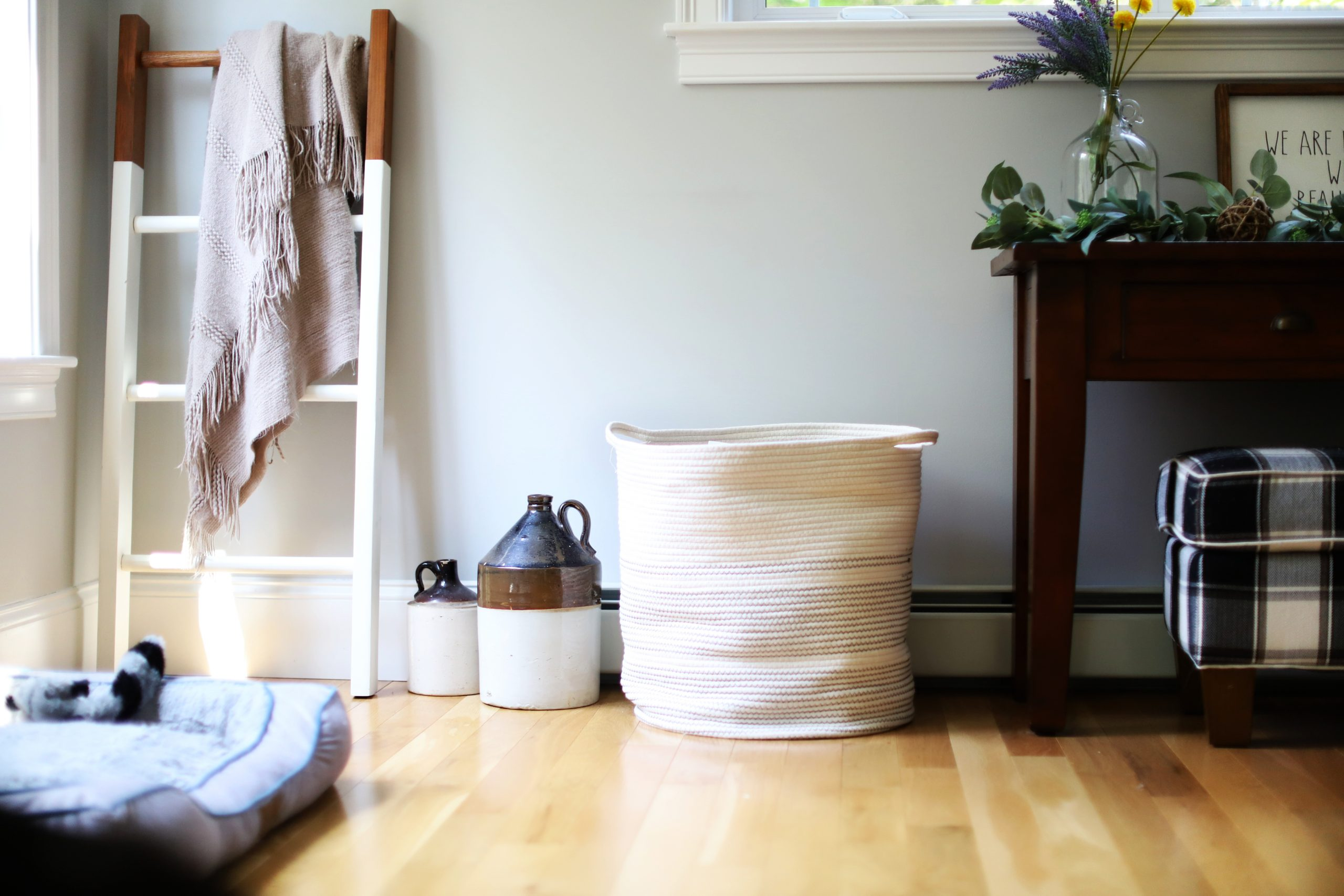 Keeping a Clean Home with Kids & Pets